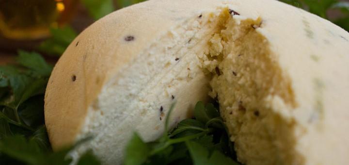 Latvian cheese