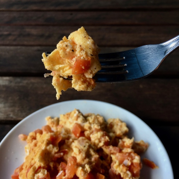 Plate of scrambled eggs and tomato on a white plate and fork holding scrambled eggs